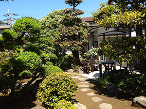 クリニック敷地内の庭